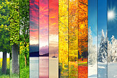 Four seasons collage, several images of beautiful natural landscapes at different time of the year, autumn, winter, spring and summer weather, planet earth life cycle concept