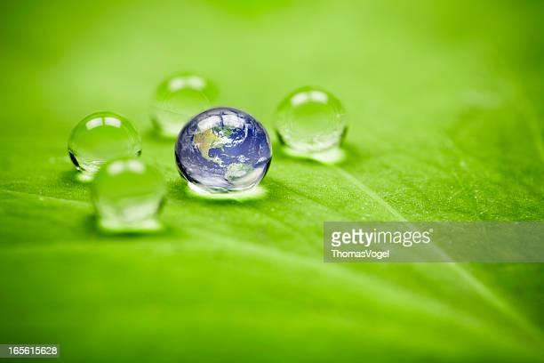 Planet Erde waterdrop leaf. america Water Green Globe Umgebung Drop