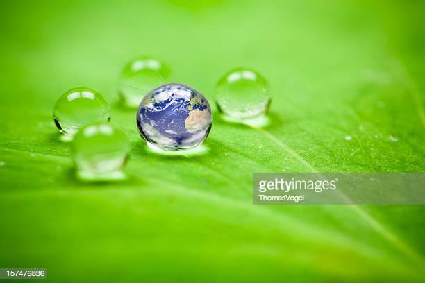 Planet Erde waterdrop Blatt. Water Green Globe Umgebung Drop
