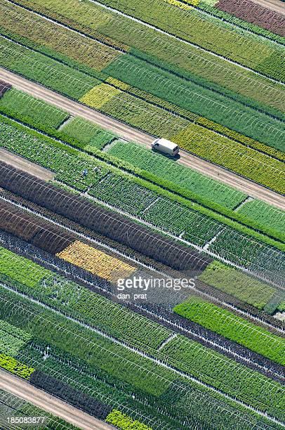 Plant Nursery Aerial Photo