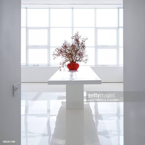 Plant on table in modern office