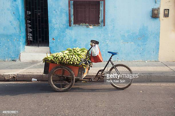 Plantains for sale
