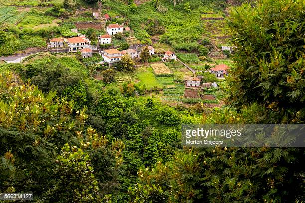 Plantation village in valley