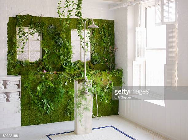 Plant-covered shower wall
