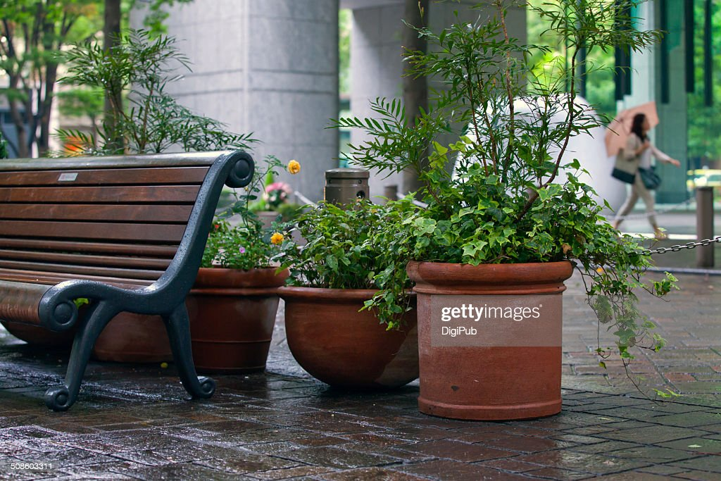 Planters and bench : Foto de stock