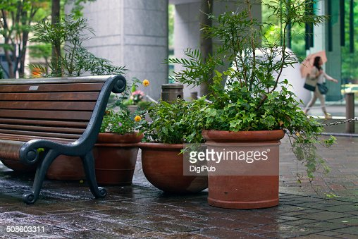 Planters and bench : Stock Photo