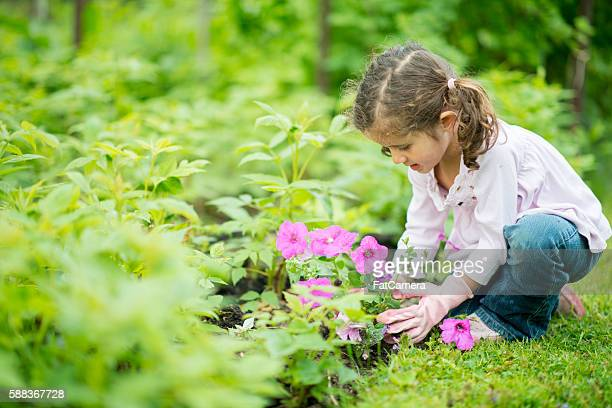 Planting Flowers Outside