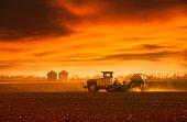 Planting rural Nebraska, USA