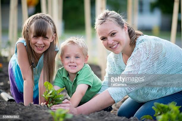 Plantação juntos em Dia da Mãe