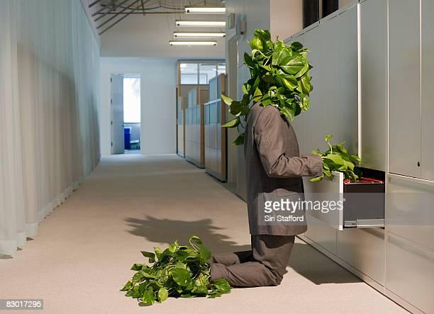 Pflanze-Mann Aufrufen des Aktenschranks