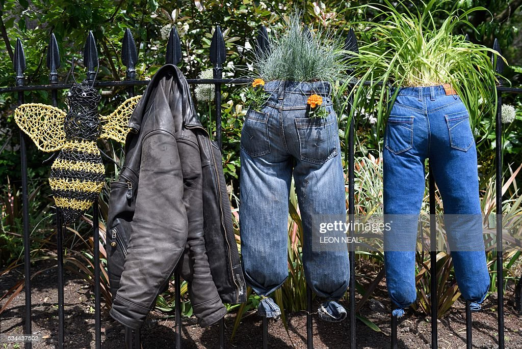 Plants and flowers grow in old pairs of jeans in a public garden display in central London, on May 26, 2016. / AFP / LEON