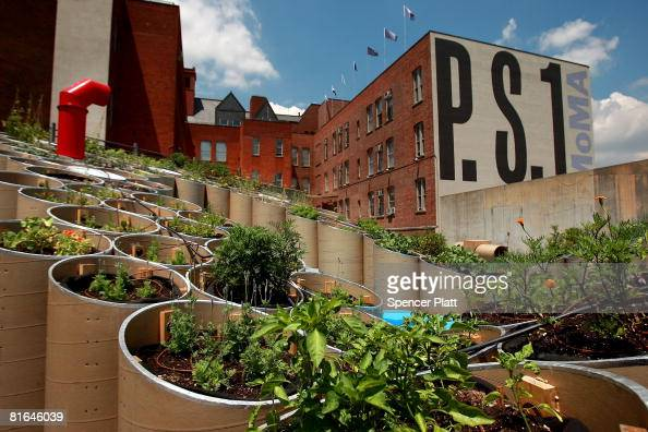 Plants grow at the PS1 exhibition titled 'PF1 ' a new installation celebrating the theme of urban farming June 20 2008 in the Queens borough of New...