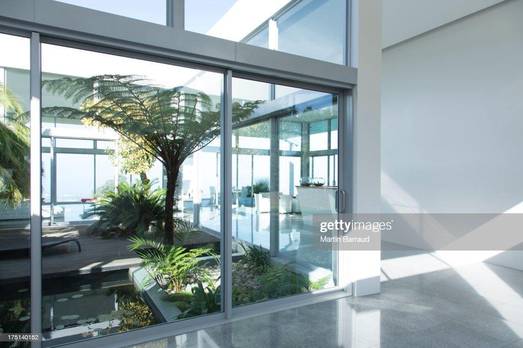 Plants growing in modern courtyard : Stock Photo