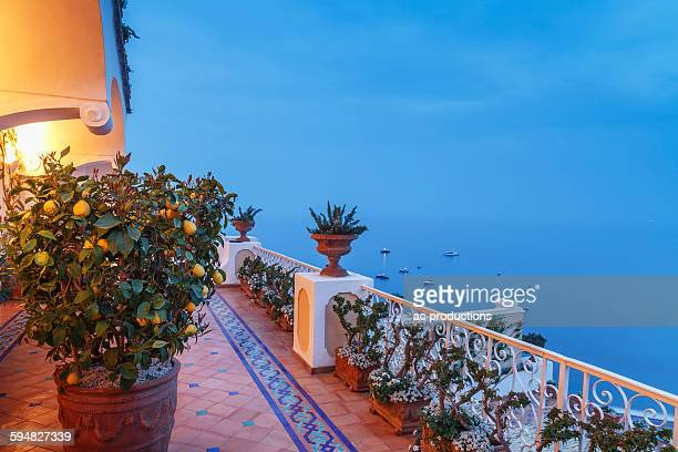 Plants on balcony overlooking seascape