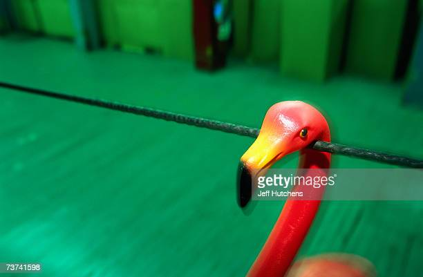 A plastic pink flamingo hangs on a line to dry after having their beak spray painted on as the originial plastic pink flamingo is manufactured by...