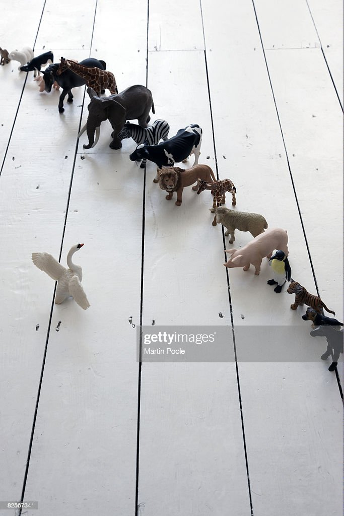 plastic toy animals lined up with swan in front : Stock Photo