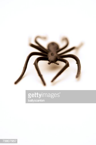 Plastic toy spider on white background : Stockfoto