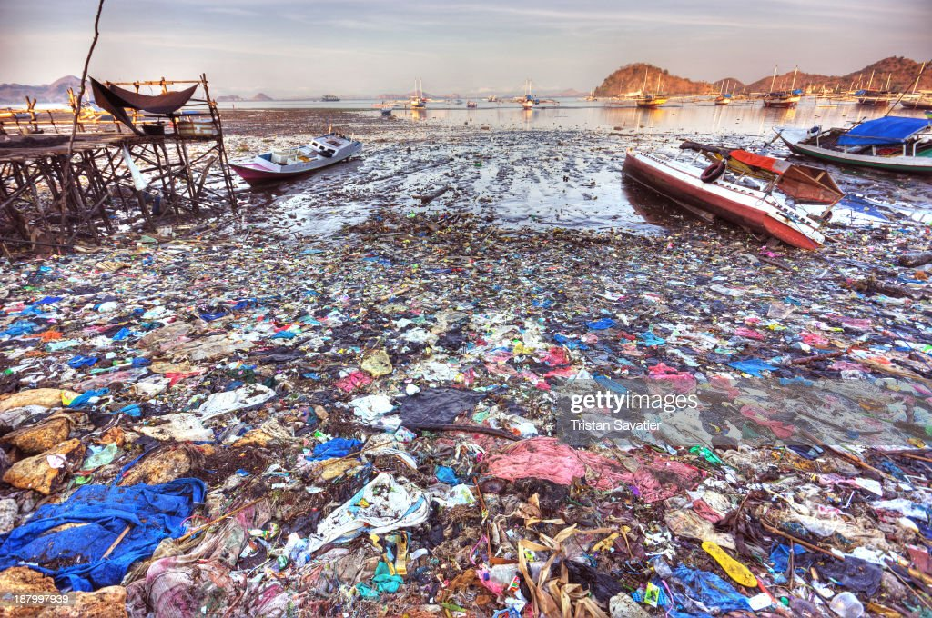 CONTENT] Plastic trash pollution on beach of Labuan Bajo It is sad to see that in that small fishing town which is the gateway to the Komodo Islands...