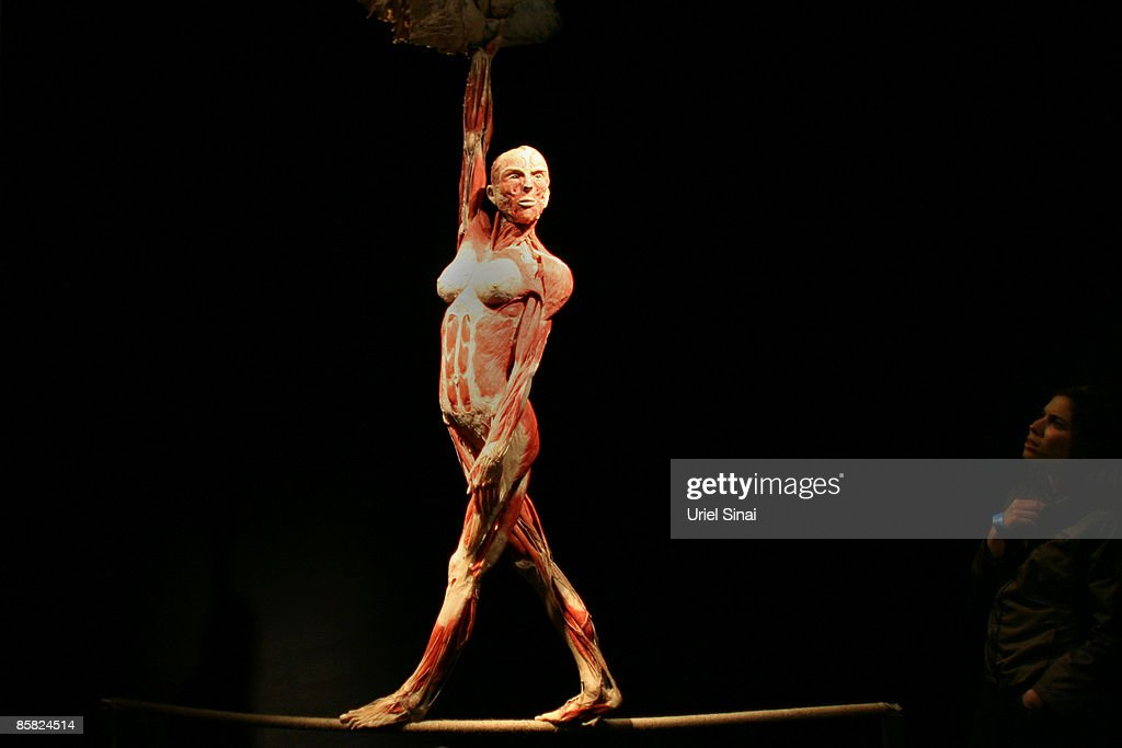 A plastinated body is displayed at the 'Body Worlds' international exhibit April 6 2009 in the northern Israeli city of Haifa Haifa's Cheif Rabbi...