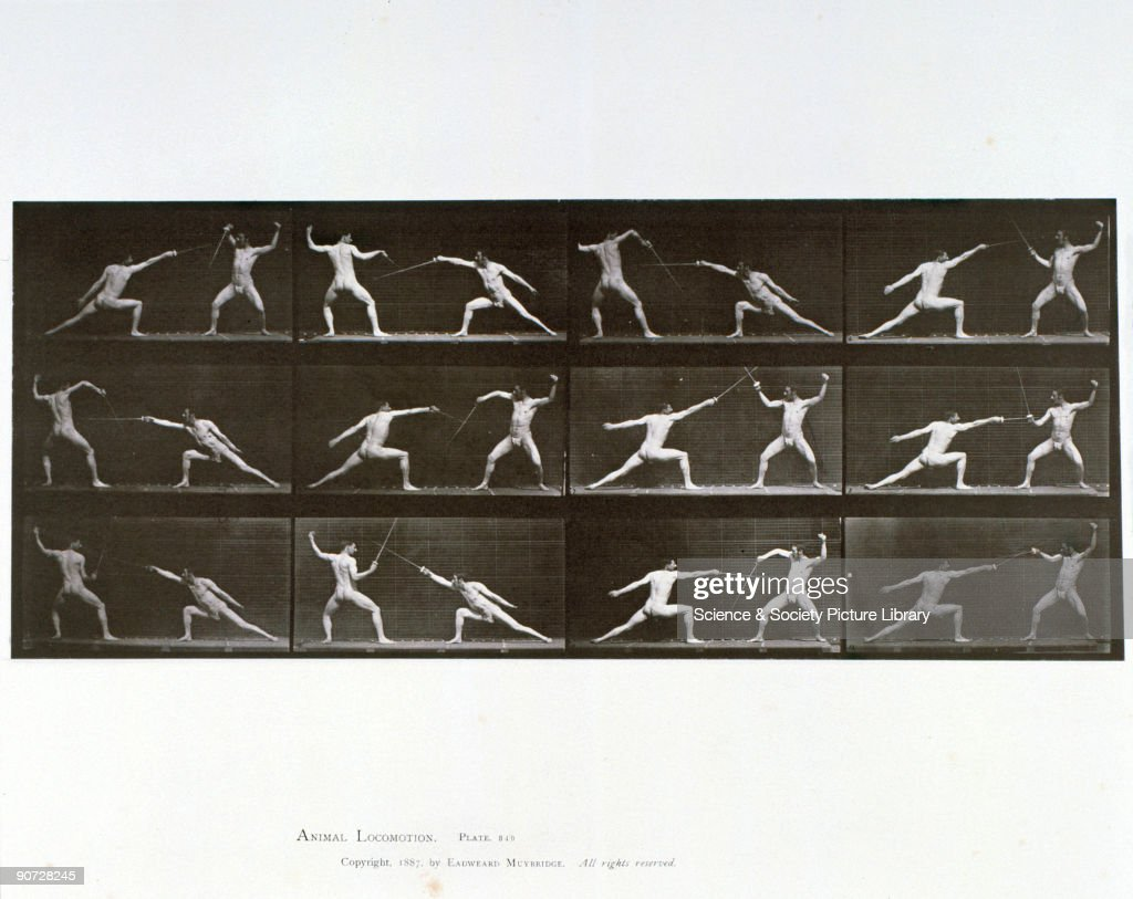 Plate 349 from Muybridge's 'Animal Locomotion' (1887). Eadweard Muybridge (1830-1904) was the first photographer to carry out the analysis of movement by sequence photography, an important stage in the invention of cinematography.