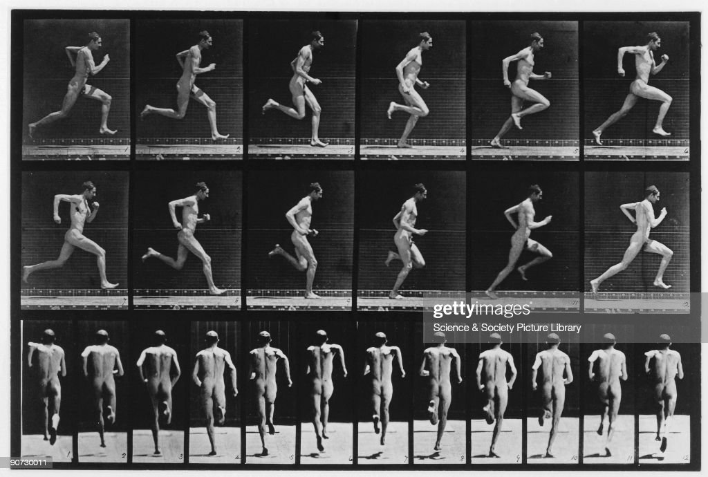 Plate 62 from Muybridge's 'Animal Locomotion' (1887). Eadweard Muybridge (1830-1904) was the first photographer to carry out the analysis of movement by sequence photography, an important stage in the invention of cinematography.