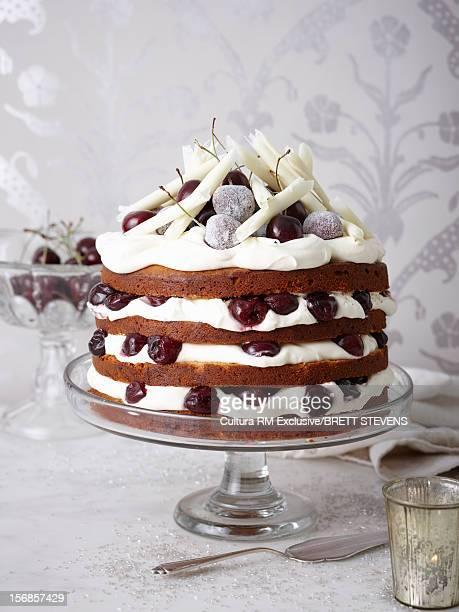 Plate of chocolate and cream cake