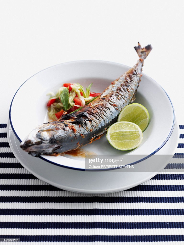 Plate of grilled fish with salad : Stock Photo