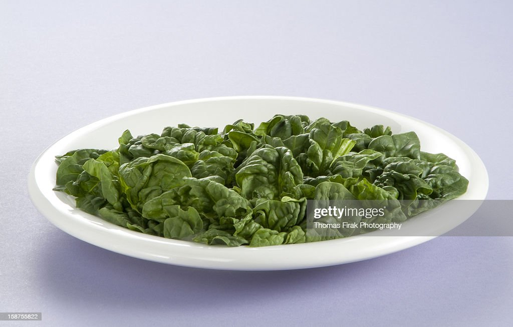 Plate of Leaf Spinach : Stock Photo