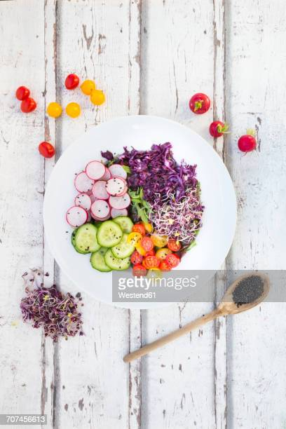 Plate of organic leaf salad, red cabbage, tomatoes, cucumber and radish sprouts