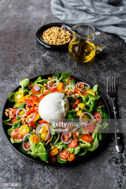 Plate of tomato salad with Burrata