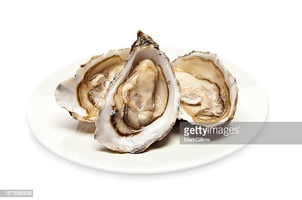 Plate serving of three fresh oysters in their shell