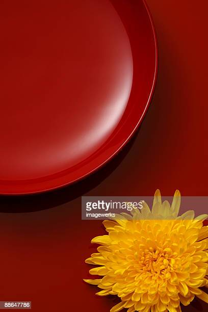 Plate with flower against red background, close-up