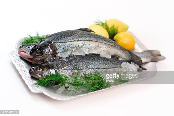Plated Fresh Trout