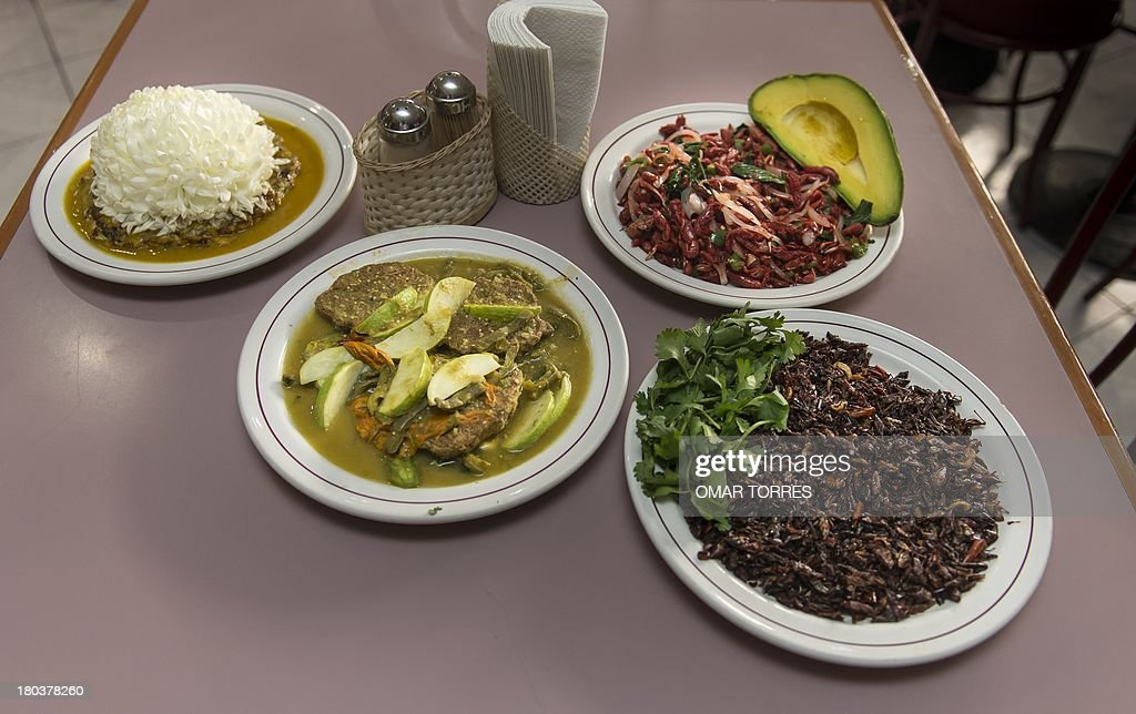 Plates of ant eggs with chrysantemums (L), 'acociles' (small crayfish, Cambarellus zempoalensis) with avocado and onion (2nd R), small pancakes of mosquito eggs with nopal (cactus leaves) and pumpkin flowers (2nd- L) and 'chapulines' (Grasshoppers, Sphenarium purpurascens) flamed in mezcal (R) at Don Chon restaurant on August 18, 2013. The Restaurant Bar Don Chon, in downtown Mexico City, was founded in 1924 specializes in exotic Mexican food.