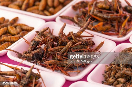 Plates of insects for sale in market