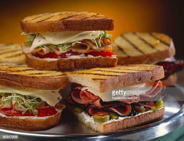 Platter of grilled sandwich, close up