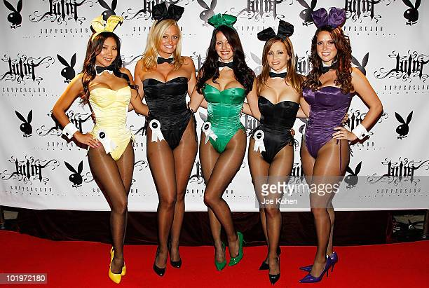 Playboy Bunnies Hiromi Oshima Laurie Fetter Pennelope Jimenez Deanna Brooks and Lindsey Vuolo attend the Playboy's 50th anniversary hosted by...