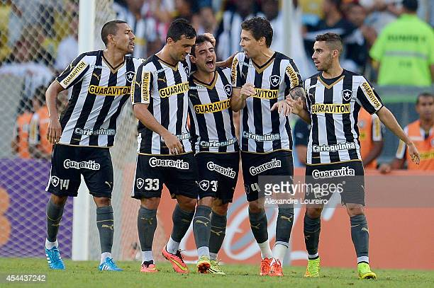 Players of Botafogo celebrates a scored goal by Daniel during the match between Botafogo and Santos as part of Brasileirao Series A 2014 at Maracana...