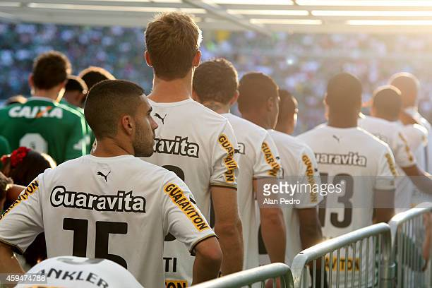 Players of Botafogo enter into the field before a match between Chapecoense and Botafogo for the Brazilian Series A 2014 at Arena Conda Stadium on...