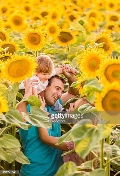 Divertida família divertir-se entre sunflowers.