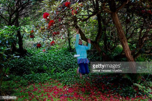 Playful Girl Reaching For Flowering Tree Branch At Forest