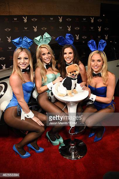Playmates Nikki Leigh Dani Mathers Alison Waite Michelle McLaughlin and internet personality Jiffpom arrive at the Playboy Party at the W Scottsdale...