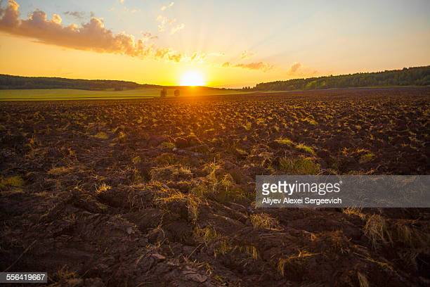 Ploughed field at sunset, Sarsy village, Sverdlovsk Region, Russia
