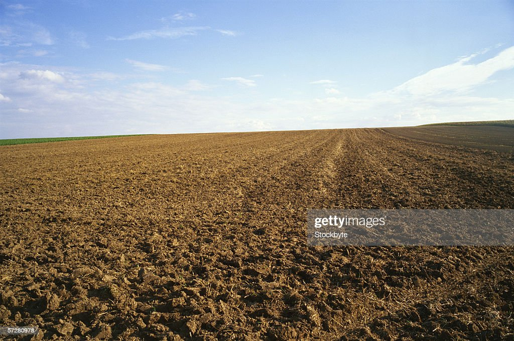 Ploughed field : Stock Photo