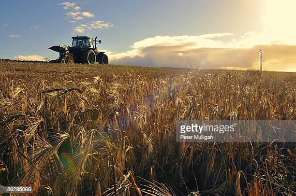 Ploughing in