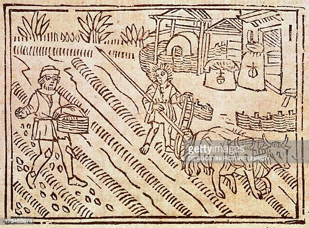 Plowing and sowing engraving from the De agricultura vulgare by Pietro de' Crescenzi Italy 15th century Venice Biblioteca Nazionale Marciana