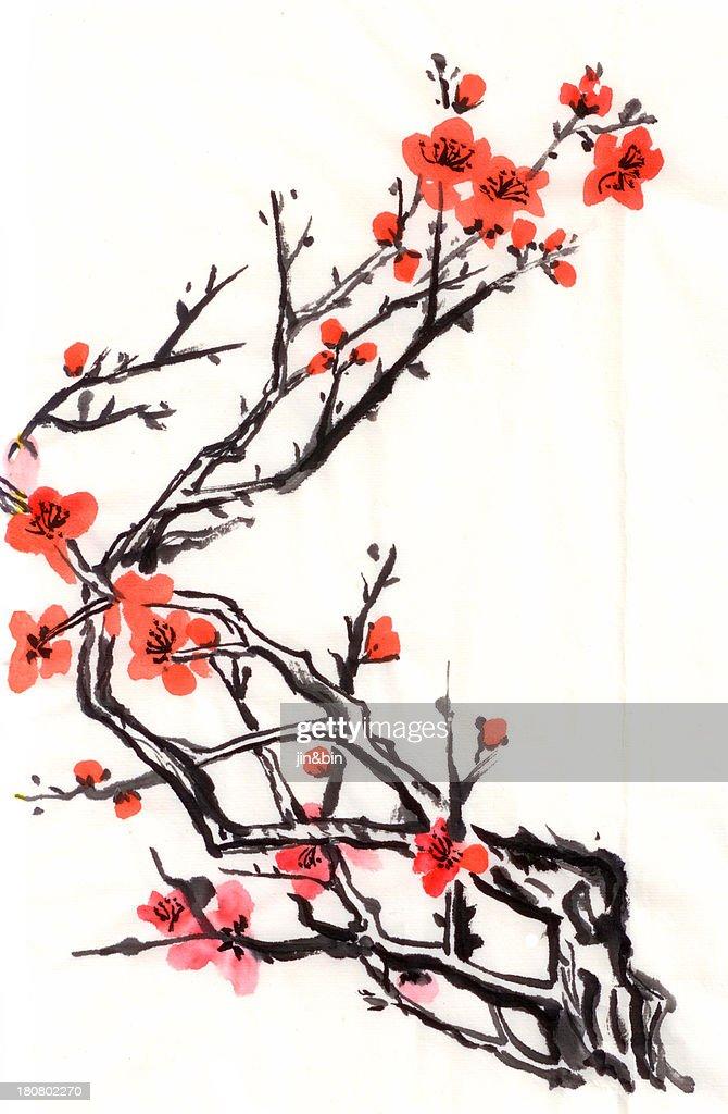 Plum flower : Stock Photo