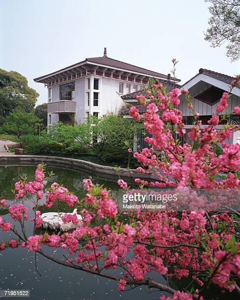 Plum Garden, Wuxi, China
