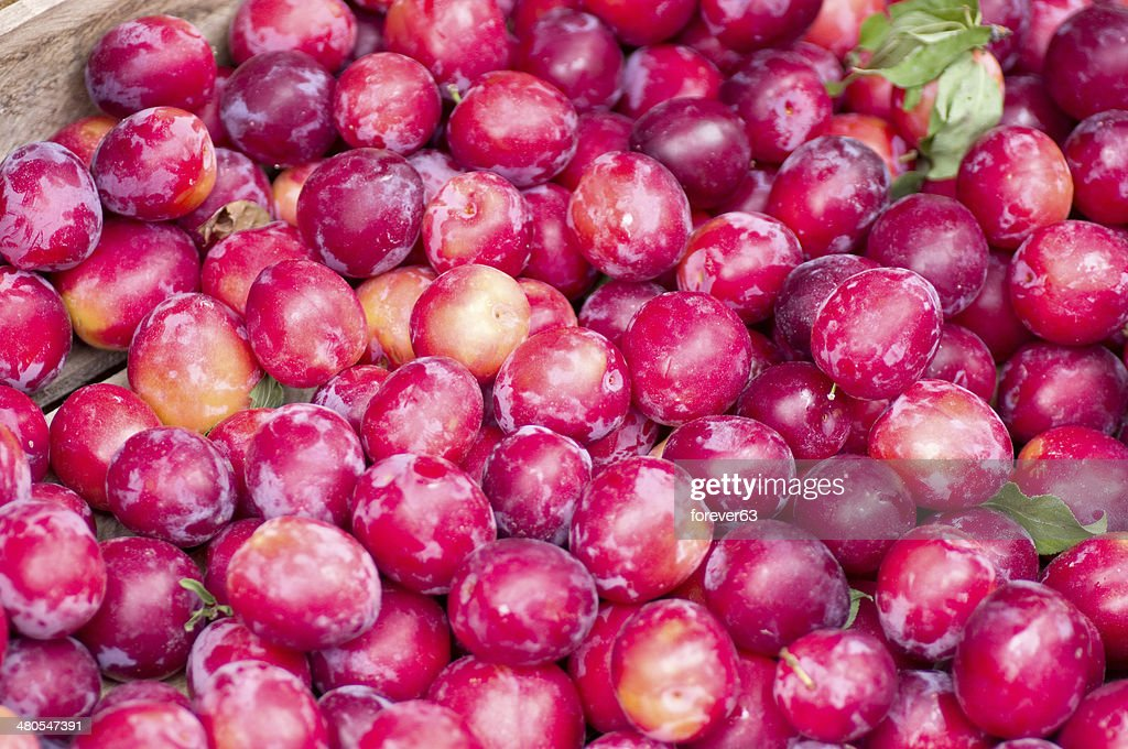 Plum harvest texture for background : Stock Photo
