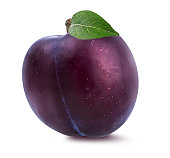 plum on a white backgroundplum on a white background